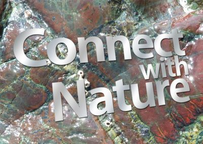 Connect with Nature Adventureline logo